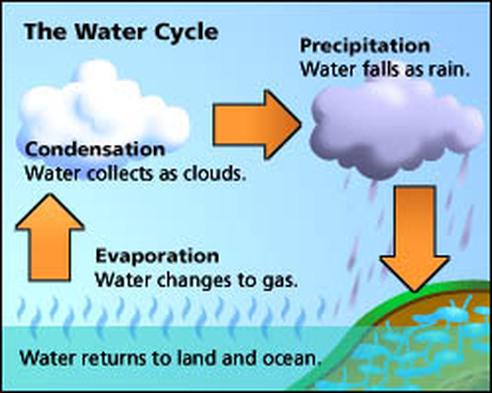 The water cycle year 7 geography picture the water cycle ccuart Choice Image